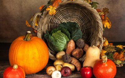 The Real Meaning of Thanksgiving: The Triumph of Capitalism over Collectivism