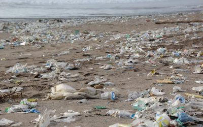 Our Planet Is Drowning in Plastic Pollution, But Several Solutions Are Already Here—Thanks to Human Ingenuity