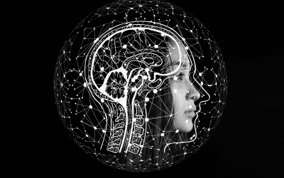 Julian Simon: The Ultimate Resource is The Human Mind