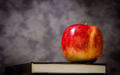 Black Education: What Makes Sense?